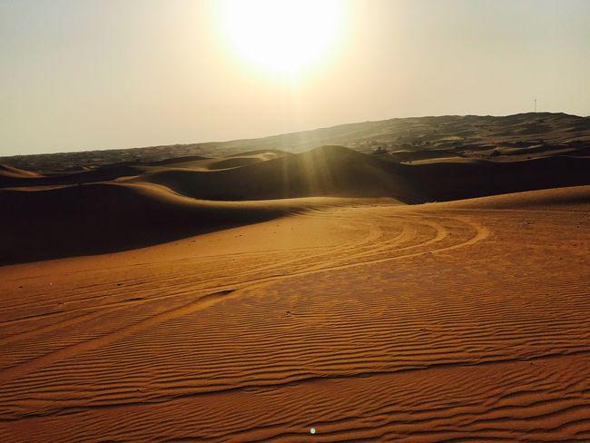 Perspectives On Nature Desert Desert Beauty Desert Landscape Sun Sunshine