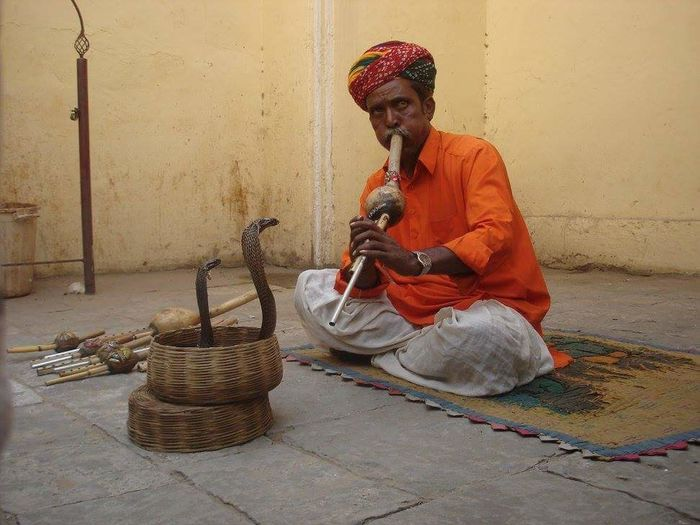 Snake Charmer Snake India Tradition Traditional Clothing Adult Basket People One Person Sweeping Sitting One Man Only Real People EyeEmNewHere