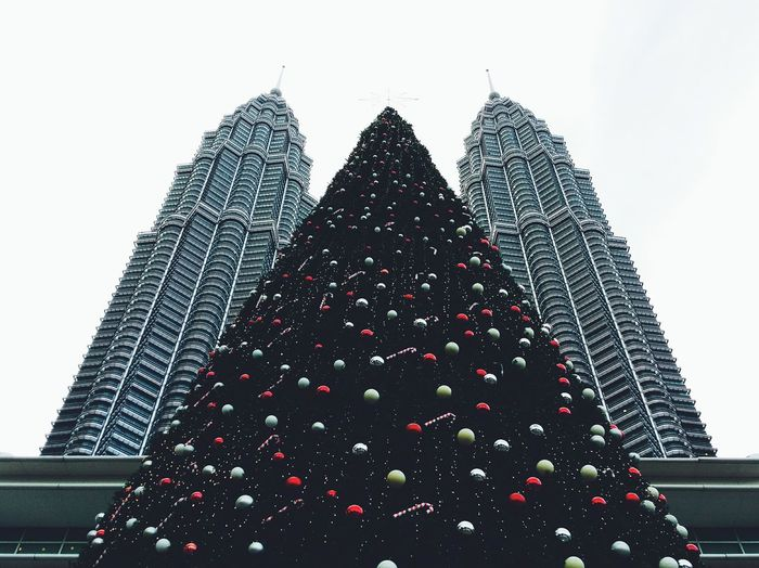 The Three Towers. Twintowers Suria KLCC Christmas Tree Celebration Low Angle View Cityscape EyeEm Best Shots Gettyimages Trees Getty X EyeEm Tree Clear Sky International Landmark December 2015  No People