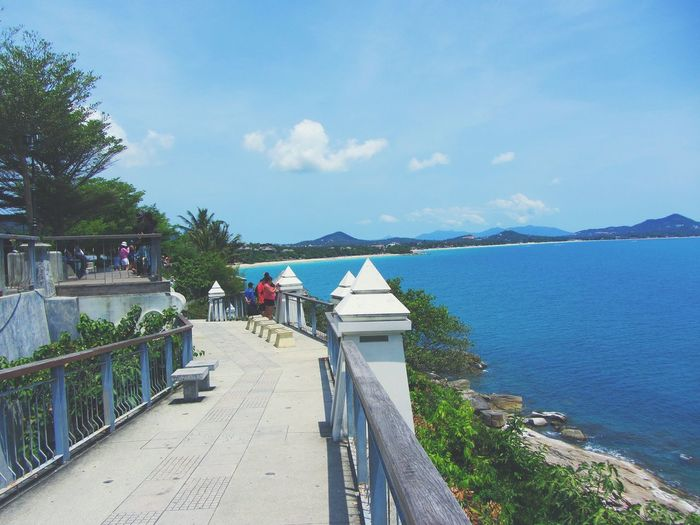 Landscape Favorite Places Thailand Kosamui Love Life Blue Water Blue Water Blue Sky Palm Tree Blue Horizons Nature Ko Samui Ko Samui Thailand Vacations Holiday Happy Beauty In Nature Amazing View Water Tree Sea Bicycle Sky Cloud - Sky Horizon Over Water Ocean Beach Calm Sandy Beach Coast Wave
