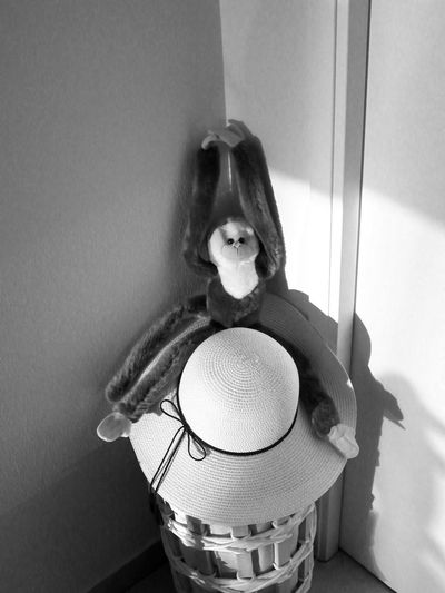One Gibbon Antic Funny Ape Looking To Camera Soft Toy Full Lenght Ape Hands Up Bnw Climbing Toy Standing On Woman Hat White Hat Black And White - Hat Shadow Black And White Animal Representation Home Interior