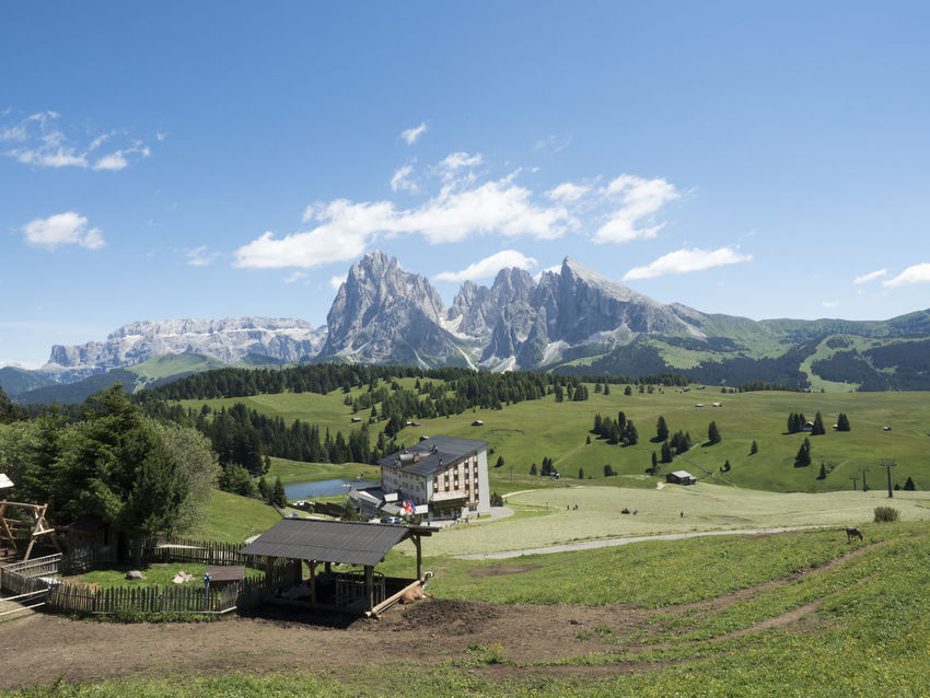 Mountain Mountain Range Nature Landscape Scenics Snow No People Beauty In Nature Outdoors Tree Green Color Sky Day Grass Dolomites, Italy Beauty In Nature Sella_gruppe Sellaronda Mountain Peak Travel Destinations