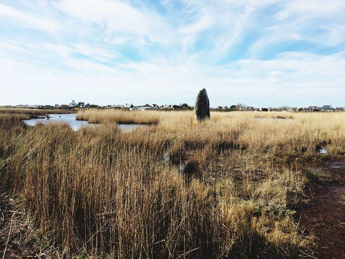 Grass Field Sky Tranquil Scene Nature Landscape Cloud - Sky Scenics Water Britanny Menhir Rock - Object The Great Outdoors - 2017 EyeEm Awards