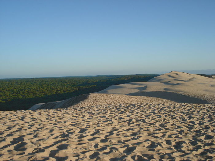 Beauty In Nature Clear Sky Dune Landscape Sand Sand Dune