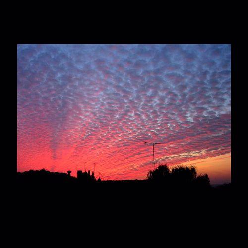 Sunrise. Sunrise Rouge Red Contre Jour