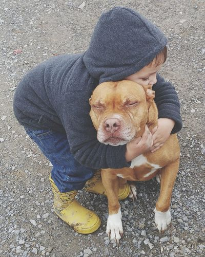Boy embracing dog on road