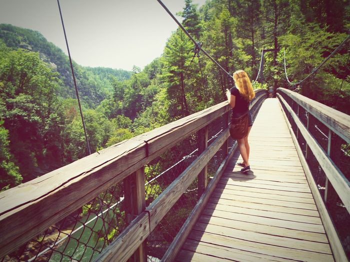 One Person Leisure Activity Bridge - Man Made Structure Walking Footbridge Lifestyles Real People Outdoors Nature Child Teen Teenager Activity Fitness Hiking Suspension Bridge Mountain Tallulah Gorge Tallulah Falls Georgia State Parks Been There. Lost In The Landscape
