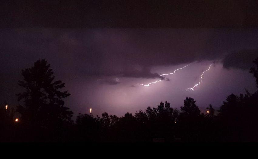 Electrifying Johannesburg South African Lighteningstrikes Lightening Thunderstorm Dramatic Sky Tree Night Storm Sky Forked Lightning Electrifying Electrifying Sky Purple Nofliter