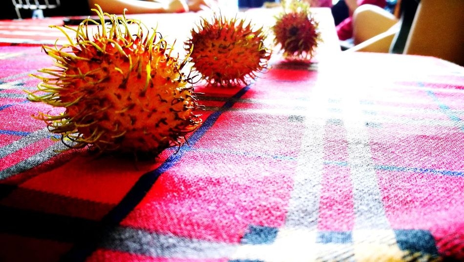 Philippine Food Viewscape Nature Photography Love Of Photography Art Love Of Art Locals Rambutan Fruit Tree In Season Fruit Odd Plant Life