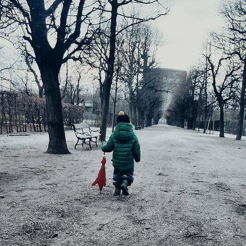 Nature! Childhood Winter Tree Child Males  Walking Outdoors One Person Rear View Little Boy Umbrella Warm Clothing Style Avenue Of Trees Tower Crow Benches Leopoldstadt Vienna Austria Augarten