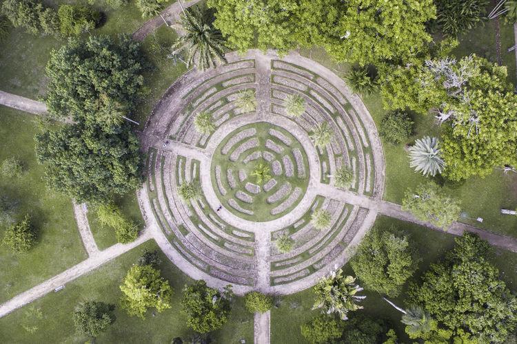 Ways Of Seeing Botanical Gardens Grass Green Rethink Things Tree Circle Garden Outdoors Visual Creativity This Is Latin America #urbanana: The Urban Playground