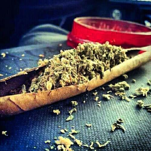 my type of blunts ;) Phat Ganja Dumb Fat Thuggin Weed