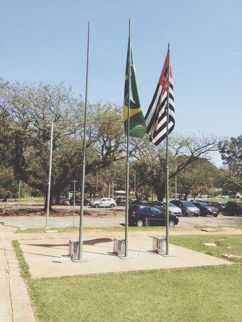 Flags Brazil