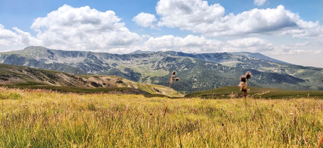 Scenic mountain view in romania