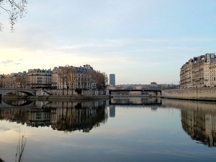 Paris Seine Seine River River City ILE DE LA CITE Ile Saint Louis Morning Morning Light Morning Sky Light Early Morning Winter Cold Building Reflection Reflected Glory France