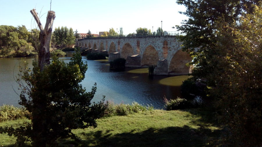 Zamora old travel Architecture Bridge - Man Made Structure Building Exterior Built Structure Day Nature No People Outdoors Sky Tree Water Zamora Zamora, Spain