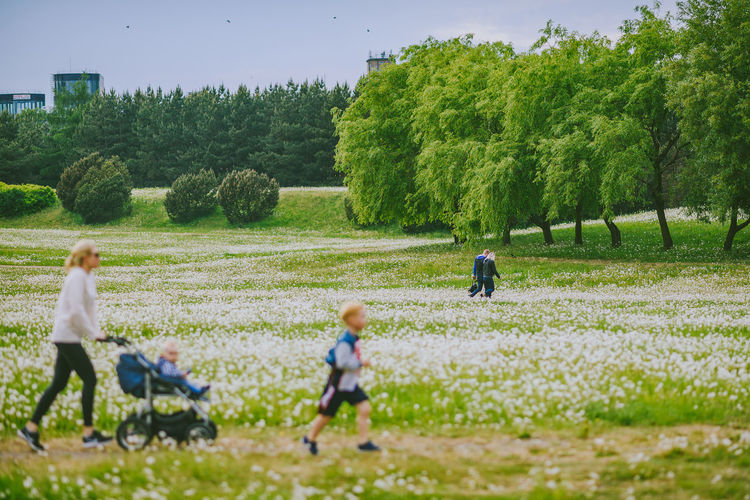 Dandelion field Boys Child Childhood Dandelion Field Day Family Females Field Full Length Grass Green Color Group Of People Land Leisure Activity Males  Men Nature Outdoors Plant Real People Tree Women The Street Photographer - 2018 EyeEm Awards