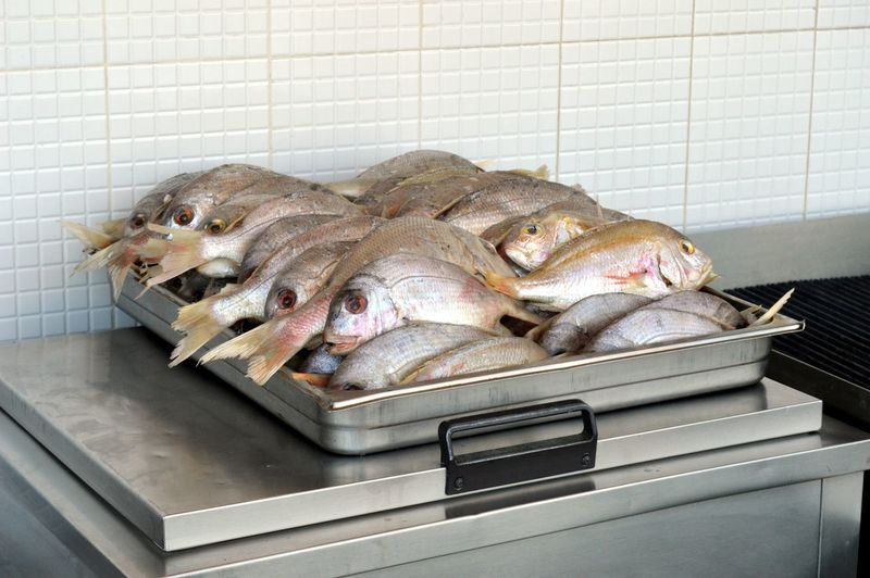 High angle view of dead fish in tray against white tiled wall at store