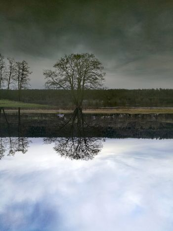 Illusion Hochwasser Reflection Water Lake Symmetry Cloud - Sky No People Reflecting Pool Nature
