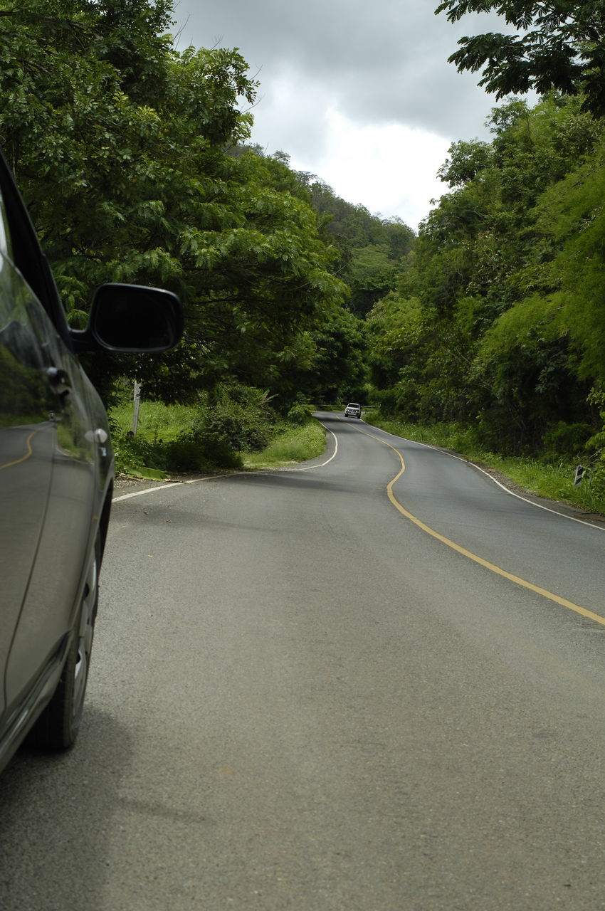 transportation, road, car, tree, mode of transport, land vehicle, day, the way forward, no people, nature, road trip, curve, sky, outdoors