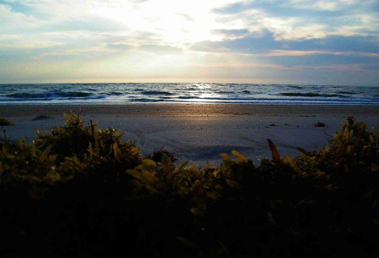 Beach Nature Sunrise Ocean View Ocean❤ Oceanlife Beach Life Beach Photography Beachlovers Beachbum St Augustine, FL St Augustine Vilano Beach, FL Vilano Beach