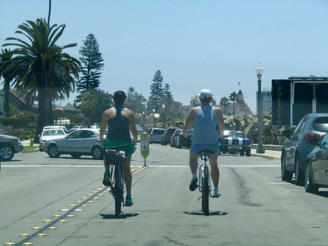 Bicycle Rear View Palm Tree Land Vehicle Tree Real People Riding Architecture Cycling Outdoors Coronado California USA