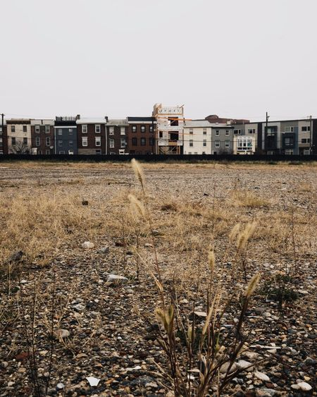 Neighborhood North Philadelphia Philadelphia City Grunge Urban Urban Skyline Architecture Built Structure Building Exterior Building Nature Sky Plant Day No People Outdoors Clear Sky Grass Residential District City Land Copy Space Growth Window Field House