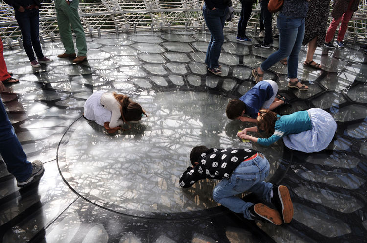 Adults And Children Casual Clothing Children Looking Through A Glass Floor Day Having Fun High Angle View Kew Gardens Kneeling Down Legs Outdoors People Watching Person The Hive Visitor Attraction