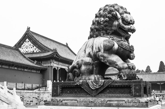 Monochrome Blackandwhite Beijing Forbidden City Travelling Chinese Architecture Statue Dragon Ancient City