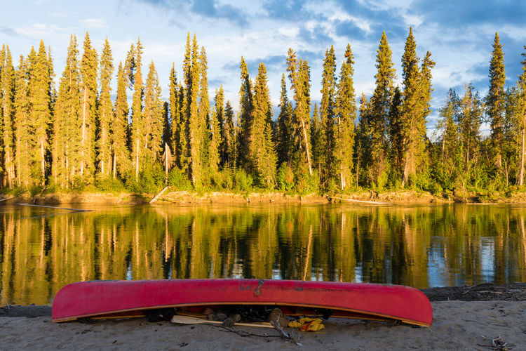 Red canoe turned over on shore of Nisutlin River, Yukon Territory, Canada, on a beautiful summer evening in boreal forest taiga Canoe Boat Canoeing Canoe Trip Adventure Nisutlin River Yukon Yukon Territory Canada Wilderness Expedition Trip Taiga Boreal Forest Forest Summer Water Tranquility Beauty In Nature Tranquil Scene Scenics - Nature Nature No People Non-urban Scene Outdoors The Traveler - 2019 EyeEm Awards