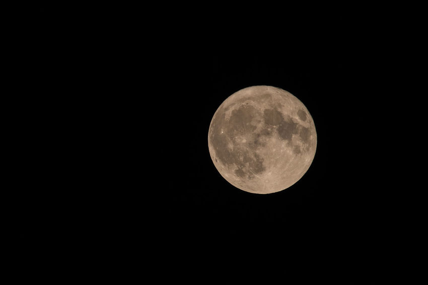 Astronomy Beauty In Nature Clear Sky Close-up Low Angle View Moon Moon Surface Nature Night No People Outdoors Planetary Moon Scenics Sky Space Space Exploration Tranquility Supermoon2017 Sigma150-600c Eos800d Monopod