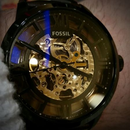 Only a matter of Time Fossilwatch Fossil