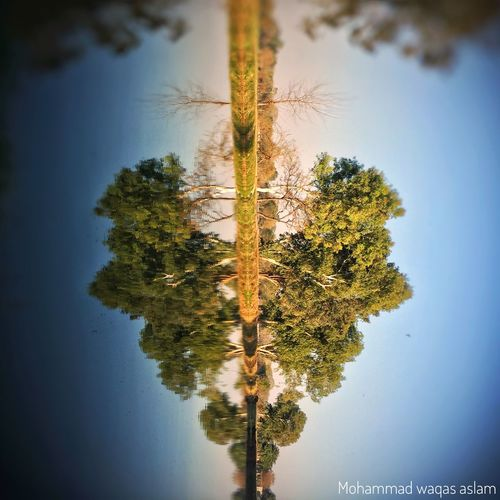The 💚 Heart Of Mother Nature The City Light Tree Sky Nature Reflection Tranquility No People Growth Scenics Outdoors Beauty In Nature Water Day Close-up Hello World Check This Out Heart EyeEm EyeEm Team EyeEm Nature Lover EyeEmHeart Myperspective Valentine's Day
