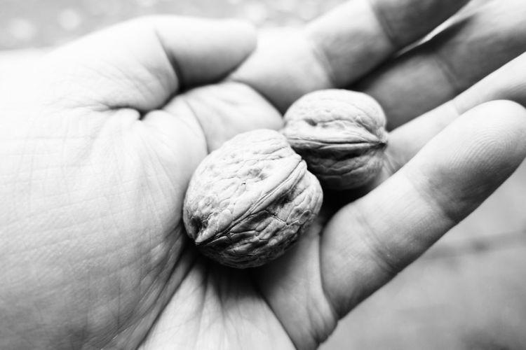 walnuts Walnuts Food Human Hand Nut - Food Nutshell Close-up