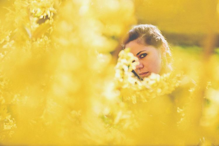 Portrait of woman amidst yellow flowers