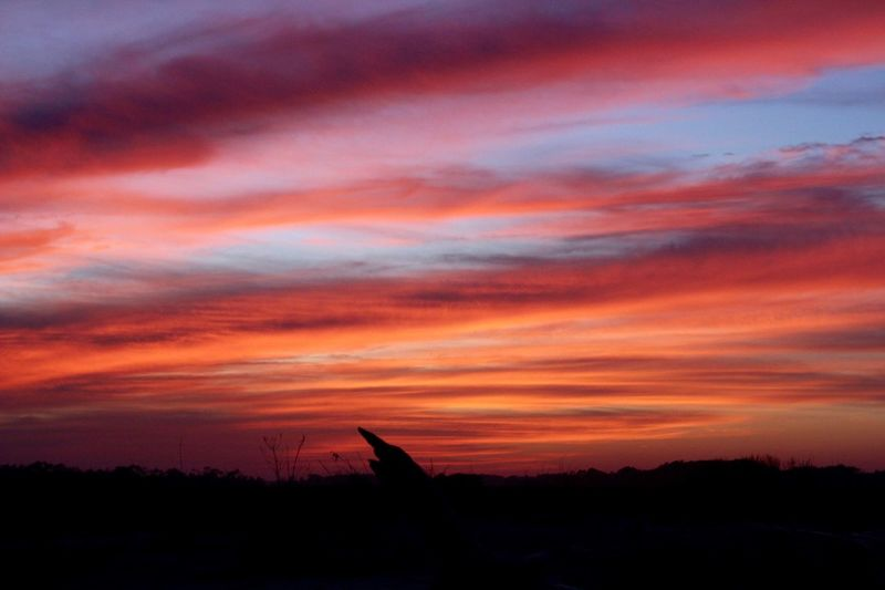 setting South Carolina Sunset Warm Warm Colors Folly Beach Beach Silhouette Marsh Fall Summer Colors Neons Pastels