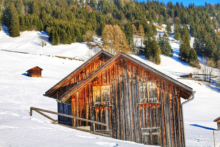Winter Snow Cold Temperature Weather Nature Frozen Beauty In Nature Tree Wood - Material Scenics Log Cabin Outdoors Day No People Tranquil Scene Landscape