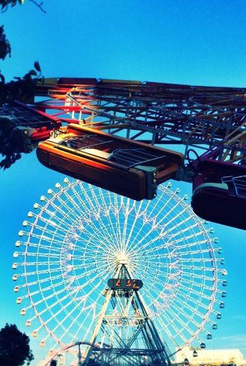 Ferris Wheel 観覧車 コスモワールド
