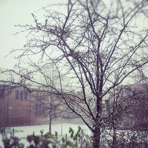 Wettercam Solingen, 7.12., 9:22 Uhr
