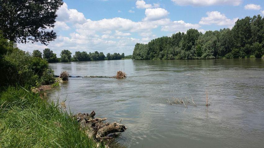 river.....drava