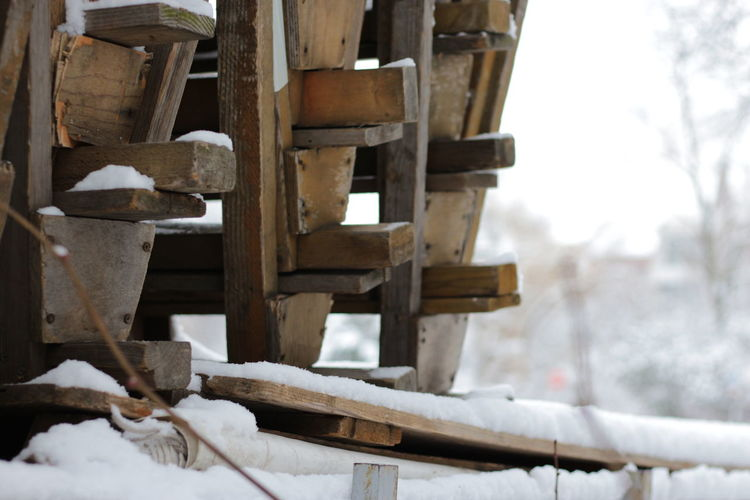Close-up of wood in winter
