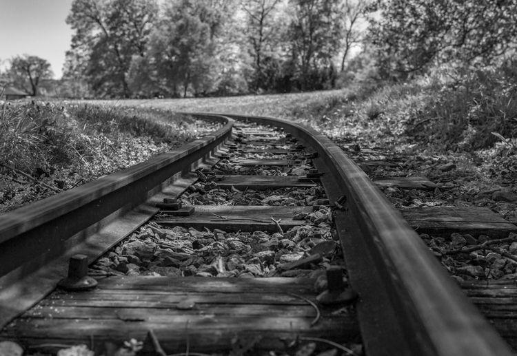 Tracks Rail