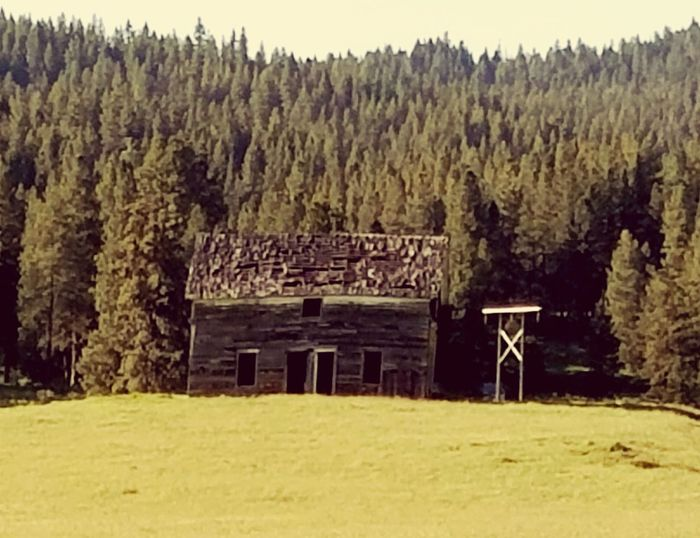 Old times Oldwest Idahoexplored Cabin Abandoned