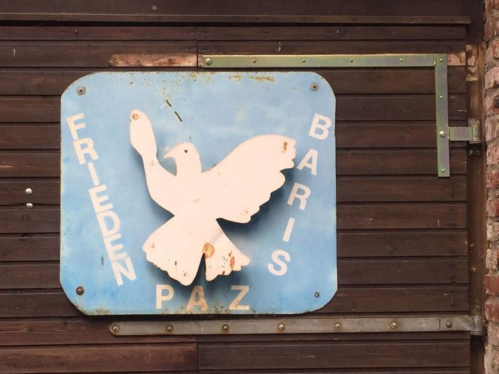 Love Peace & Happiness 😊 Make Love Not War Against War Dove Dove Of Peace Peace Wood - Material No People Day Close-up Communication Outdoors