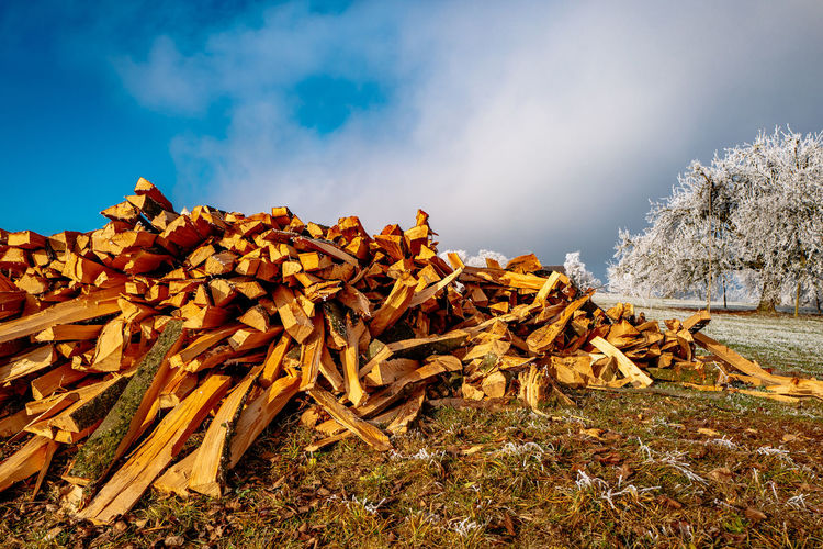 View Of Firewood Against Sky