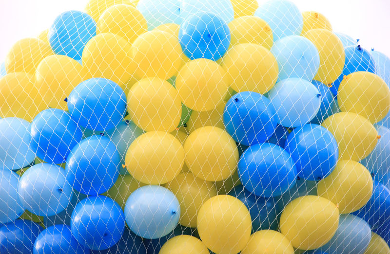 Close-up of multi colored balloons in net