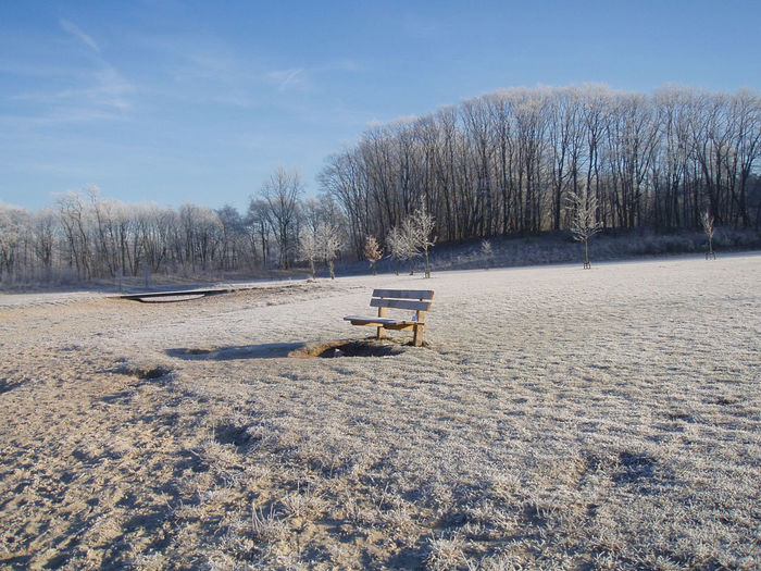 Winter bench. Netherlands Park Bench Winter Snow Trees And Sky Sky Beauty In Nature Cold Temperature Winter Wonderland Hilversum