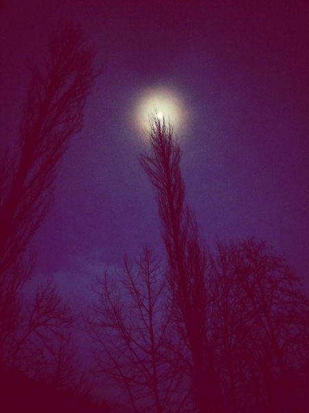 Night Eyem Best Shots Turkey Saimbeyli Sektör Yapım Nature_perfection EyeEm Nature Lover Nature MoonlightMoon