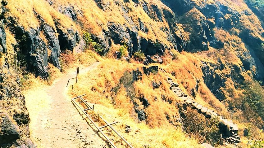 Rajgad the best trek route... Mountain Beauty In Nature Scenics Clear Sky Tree Tranquility Outdoors Landscape Nature No People Close-up Day Architecture City Cityscape Cloud - Sky Hd Photo Hd Photography Sky Spirituality Elephant Blue EyeEmNewHere One Person