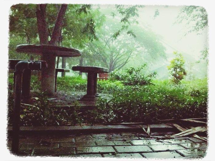 Like a Mushroom House. :)) Rain